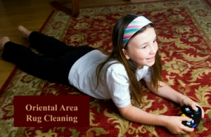 Oriental Area Rug Cleaning