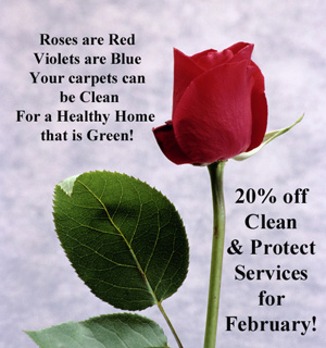 Clean Carpets for Your Valentine this Year!